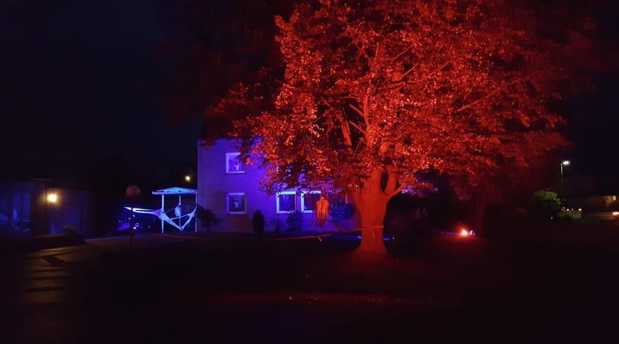 Außenbeleuchtung - Baum